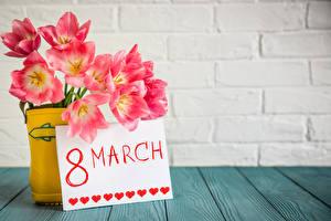 Обои Праздники Международный женский день Тюльпаны Доски Английский Розовый Стена Цветы
