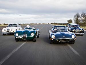 Обои Jaguar Спереди Металлик Едет авто
