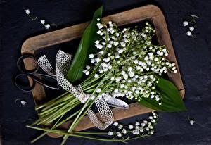 Фотографии Ландыши Букеты Цветы