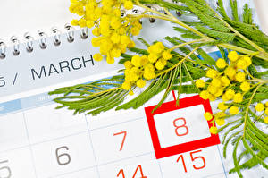 Фотография 8 марта Праздники Мимозы Цветы