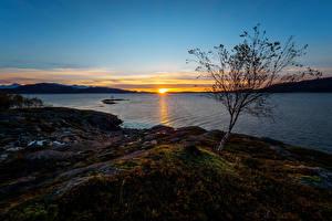 Фото Норвегия Рассветы и закаты Реки Побережье Солнце Природа