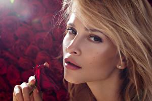 Картинки Розы Блондинка Лицо Взгляд Девушки