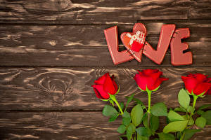 Фотографии Розы Доски Красный Английский Сердце Цветы