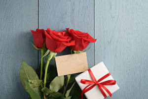 Картинка Розы Доски Красный Подарки Шаблон поздравительной открытки Ленточка Цветы