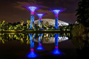 Картинка Сингапур Сады Пруд Ночные Отражение Залив Gardens by the Bay Природа