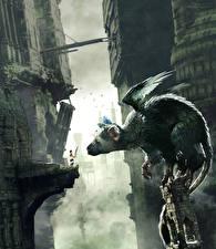 Картинки Сверхъестественные существа Мальчики The Last Guardian Игры Фэнтези