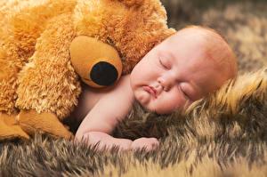 Фотографии Мишки Младенца Спящий Дети