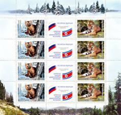 Фотография Тигры Почтовая марка Fauna, Russia-DPRK Joint Issue