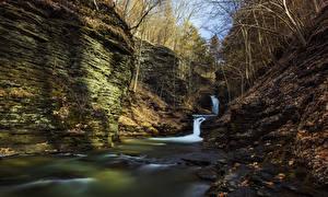 Фотографии США Водопады Осень Нью-Йорк Скала Листья Мох Deckertown Montour Falls Природа