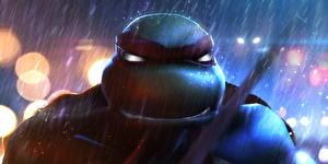 Фотографии Воители Дождь Teenage Mutant Ninja Turtles Raphael