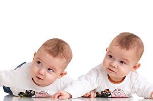 Фото Белый фон Младенцы Двое Взгляд Дети