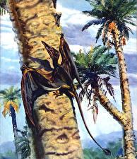 Фотография Zdenek Burian Древние животные Динозавры Rhamphorhynchids Животные
