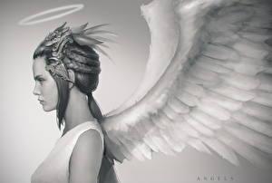 Фотографии Ангелы Крылья Нимб Черно белое Фэнтези Девушки