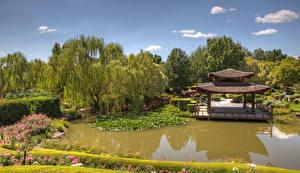 Обои Австралия Сады Пагоды Пруд Кусты Деревья Hunter Valley Gardens Pokolbin Природа