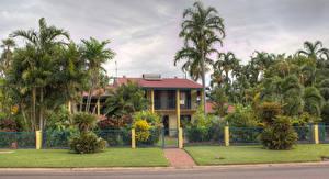 Фотографии Австралия Здания Особняк Пальмы Кусты Забор Газон Darwin Region Природа
