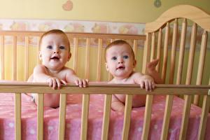 Картинки Кровать Младенцы Двое Взгляд Дети