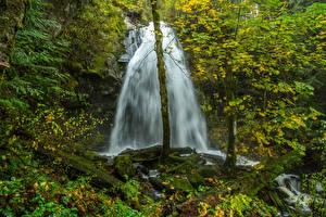 Обои Канада Водопады Мох Природа