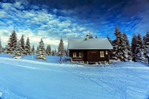 Обои Чехия Зима Дома Небо Снег Ель Облака Smedava Liberec Region Природа