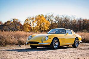 Картинка Феррари Ретро Желтый Металлик 1965-66 275 GTB 6C Acciaio