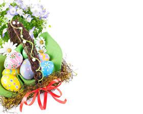 Картинка Праздники Пасха Ромашки Белый фон Яйца