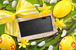 Фотография Праздники Пасха Нарциссы Шаблон поздравительной открытки Яйца Бантик
