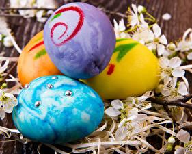 Обои Праздники Пасха Яйца Игры Девушки Фэнтези картинки