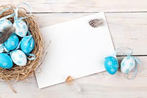 Обои Праздники Пасха Перья Доски Яйца Шаблон поздравительной открытки Гнездо