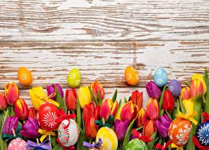 Фотографии Праздники Пасха Тюльпаны Много Доски Яйца Цветы
