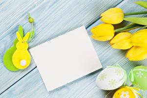 Фотография Праздники Пасха Тюльпаны Кролики Доски Шаблон поздравительной открытки Желтый Яйца Цветы