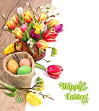 Фото Праздники Пасха Тюльпаны Доски Яйца Английский Цветы