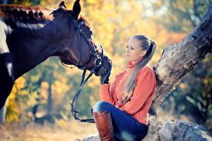 Обои Лошади Свитер Взгляд Девушки