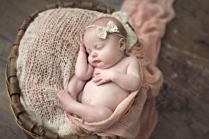 Фотографии Младенцы Спит Дети