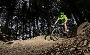 Картинка Мужчины Велосипед Шлем Деревья Крик Спорт