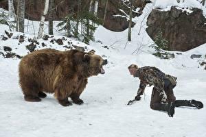 Обои Мужчины Викинги (телесериал) Медведи Гризли Снег Alexander Ludwig Кино Животные