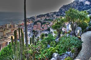 Картинки Монако Дома Побережье Кактусы HDRI Fontvieille Города