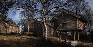 Обои Норвегия Здания Деревья Namsos Nord-Trondelag
