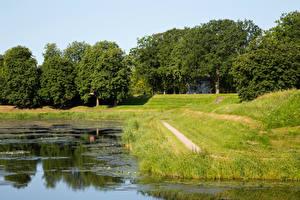 Фотография Норвегия Пруд Деревья Трава Fredrikstad Природа