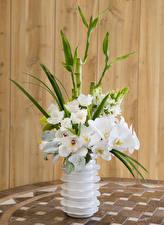 Фотографии Орхидеи Доски Ваза Белый Цветы