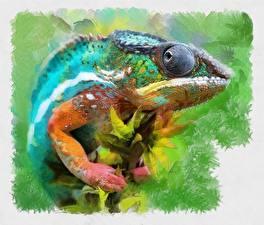 Картинки Рисованные Ящерицы Хамелеоны