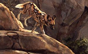 Обои Рисованные Камни Coyote Животные картинки