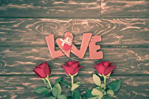 Фотография Розы Доски Трое 3 Бордовый Английский Сердце Цветы