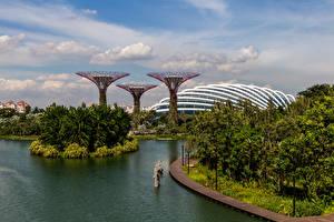 Обои Сингапур Сады Пруд Gardens by the Bay Природа