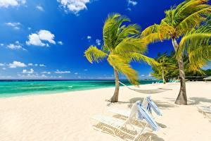 Фотография Небо Море Пляж Пальмы Лежаки Гамак Природа