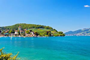Картинка Швейцария Озеро Здания Берег Bern Thunersee Города