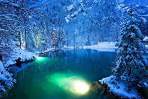 Картинки Швейцария Зима Озеро Леса Снег Ель Kander Valley Природа