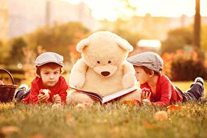 Обои Мишки Мальчики Двое Книга Дети
