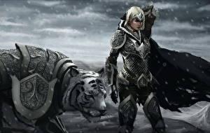 Фото Тигры Воители Снег Доспехи Фэнтези