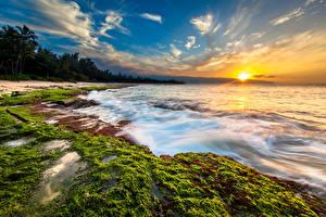 Фотографии Тропики Рассветы и закаты Побережье Пейзаж Небо Волны Океан США Гавайи Солнце