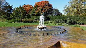 Фотографии Штаты Парки Фонтаны Чикаго город Кустов Дерево Botanic Garden Природа