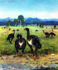 Фотографии Древние животные Zdenek Burian Emeus crassus Животные